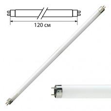Lamp fluorescent 36W. 120cm.