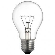 Lamp Incandescent 100W E27