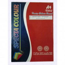 Paper A4, 180gr., 100 sheets Specta Colour